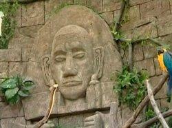 Дождевой лес в Минске: в зоопарке открылся тропический экзотариум