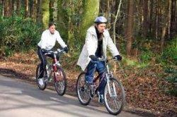 На Августовском канале откроют велопрокат, детские площадки и кемпинг