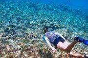 Жирона ждет любителей плавания в открытом море