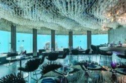 На Мальдивах после ремонта открылся подводный ночной клуб