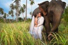 Туристическое управление Таиланда проводит конкурс «Романтический Таиланд» для влюбленных пар из шести стран, в том числе Беларуси