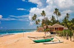 Главный плюс Шри-Ланки в том, что она вся для нас экзотична!