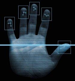 Месяц со дня введения биометрии: какие проблемы возникают у туристов и турфирм