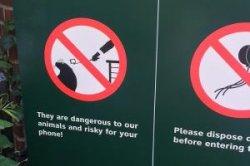 Нью-Йорк запрещает селфи-палки