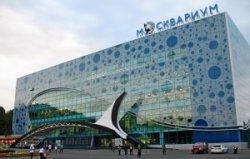 Крупнейший в Европе океанариум открылся в Москве