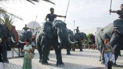 Туроператор: иностранные туристы возвращаются в Тунис