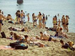 На Соже открылся платный пляж с камерой хранения и защитой от лошадей