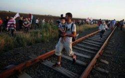 Власти Венгрии рассказали о воздействии ситуации с мигрантами на въездной туризм