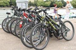 В Минске будут развивать ночной прокат велосипедов