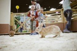 В Минске открылся самый большой контактный зоопарк