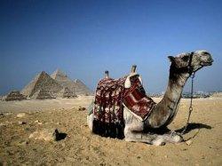 Египет запускает кампанию по привлечению туристов