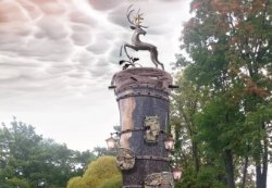 В Гродно в конкурсе идей для парковой скульптуры из старого ясеня победил проект Владимира Качана