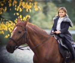 На выходных: Ван Гог, «Провинция», лошадки и валенки
