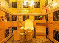 Туристский автобус за 9 млрд рублей и придорожный туалет за 385 тыс. долларов: в Гомеле проходят интересные тендеры