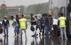 Нидерланды рассматривают возможность создания мини-Шенгена