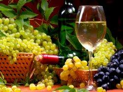 2016-й станет в Каталонии годом гастрономии и винного туризма