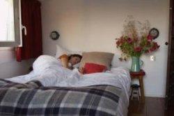 AirBnB убивает отельный бизнес в Чехии