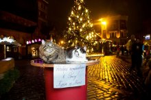 TOURPOST: Нил Ушаков и рижские коты