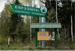 12 декабря в Березинском заповеднике распахнет двери Резиденция Деда Мороза