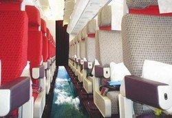 В Америке создадут самолет для смелых пассажиров
