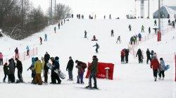 23 января в Минске отпразднуют День снега