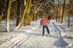 В Беловежской пуще появился новый маршрут для любителей покататься на лыжах