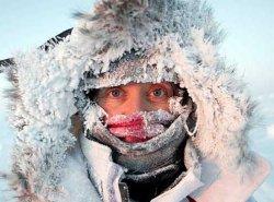 Поездка в Лапландию от дискаунтера автобусных туров: «В автобусе не работало отопление, а новогодний ужин закончился в 24.00»