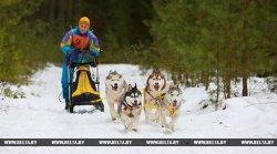 Фоторепортаж со слета-фестиваля любителей ездового спорта «Северные псы»