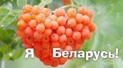 К 14 февраля Гродно готовит признание в любви Беларуси на билбордах