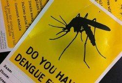 Туристов предупреждают: на Пхукете утроилось число заразившихся лихорадкой Денге