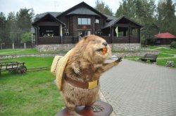 Представляем участников воркшопа Buy Belarus: туристическо-охотничий комплекс «Бобровая Хата»