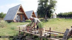 Агроусадеб в Беларуси за прошлый год стало на 11% больше