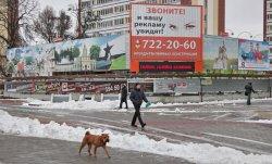 Исторический центр Бреста освободят от больших билбордов