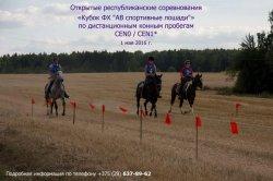1 мая под Минском пройдут открытые соревнования по конным пробегам