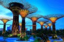 Сингапур вводит обязательное дактилоскопирование для всех иностранцев
