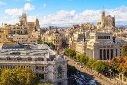 Гастрономическую библиотеку откроют в Мадриде