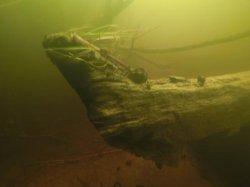 Члены дайв-клуба «Морской Пегас» нашли в реке Березине старинный корабль