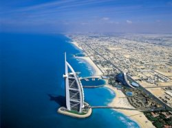 В Дубае туристы смогут заряжать гаджеты от пальм