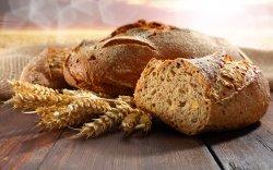 18 июня – праздник хлеба в «Наносах–Новоселье»