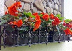 В Глубоком установили самую большую в Беларуси цветочницу