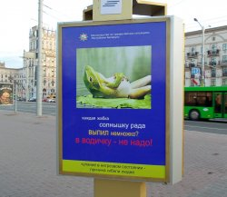 Плакаты «про жабку» и отсутствие грибных туров. Что еще удивило голландских туристов в Беларуси?