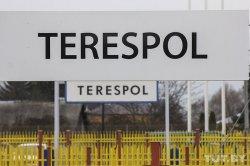 Мигранты штурмуют белорусско-польскую границу: за день попасть в Евросоюз пытаются более 500 переселенцев