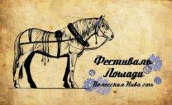 На фестивале в Столинском районе в лотерею разыграют лошадь