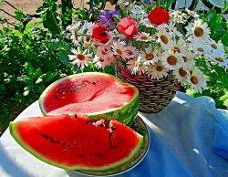 Выходные: сфотографироваться с Цмоком, полюбоваться цветами в Желудке и отведать яблок в Шарковщине