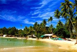 Курорты Шри-Ланки станут еще доступнее вместе с «ИНТЕРСИТИ»