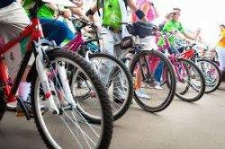 В Вилейке организуют велопробег по библиотекам района