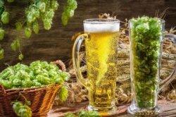 Чехия выбрала лучшее пиво