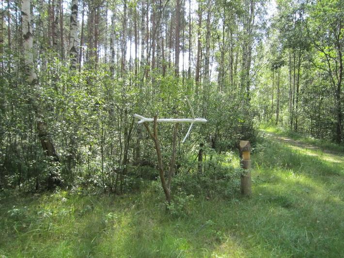 Картинки про белорусскую природу