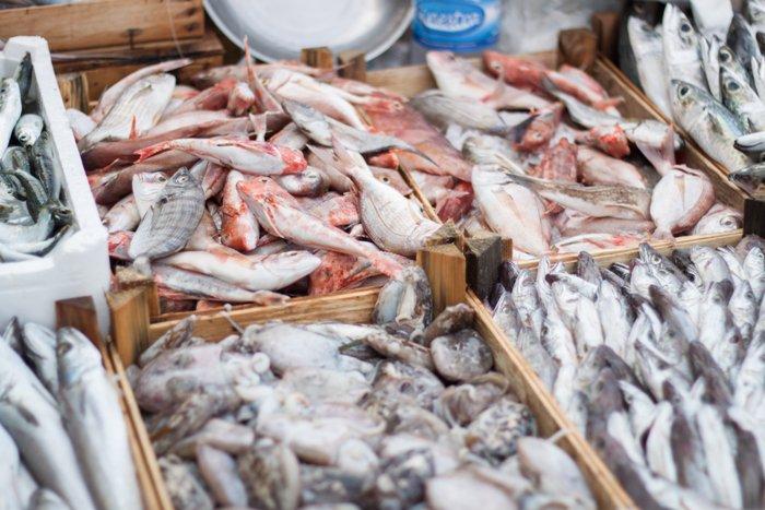 морепродукты, Sapori tours, винные и гастрономические туры