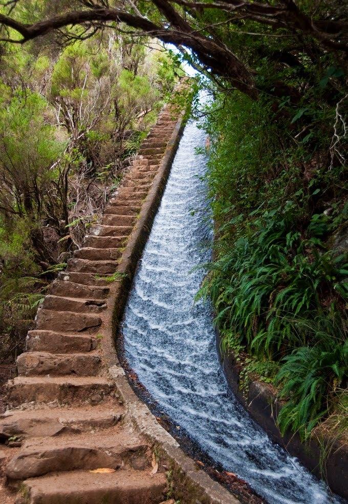 Остров Мадейра. Какой отдых на Мадейре и сколько стоят ...